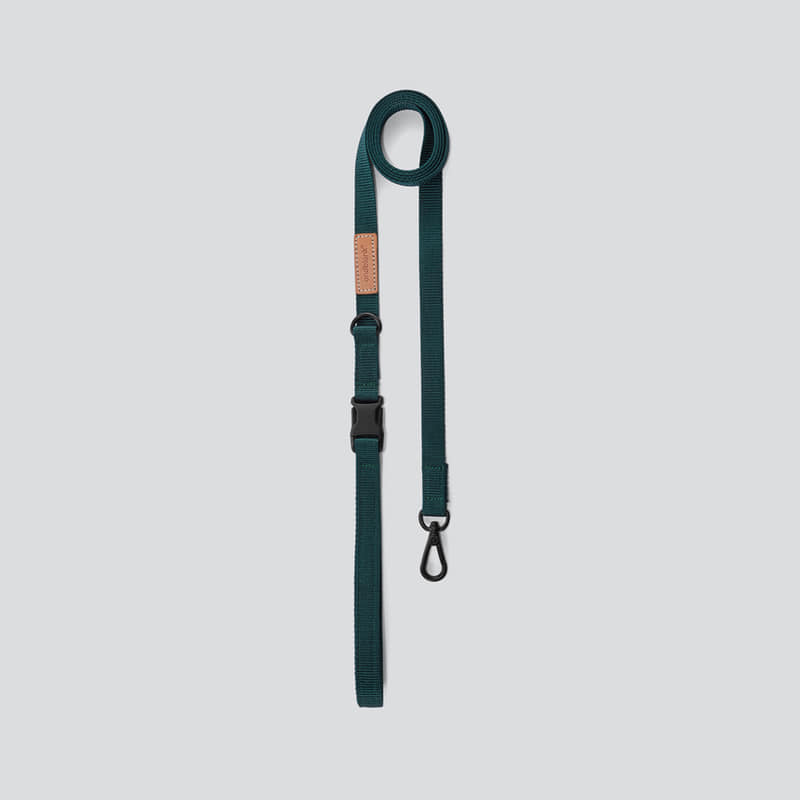 [andblank] leash : green