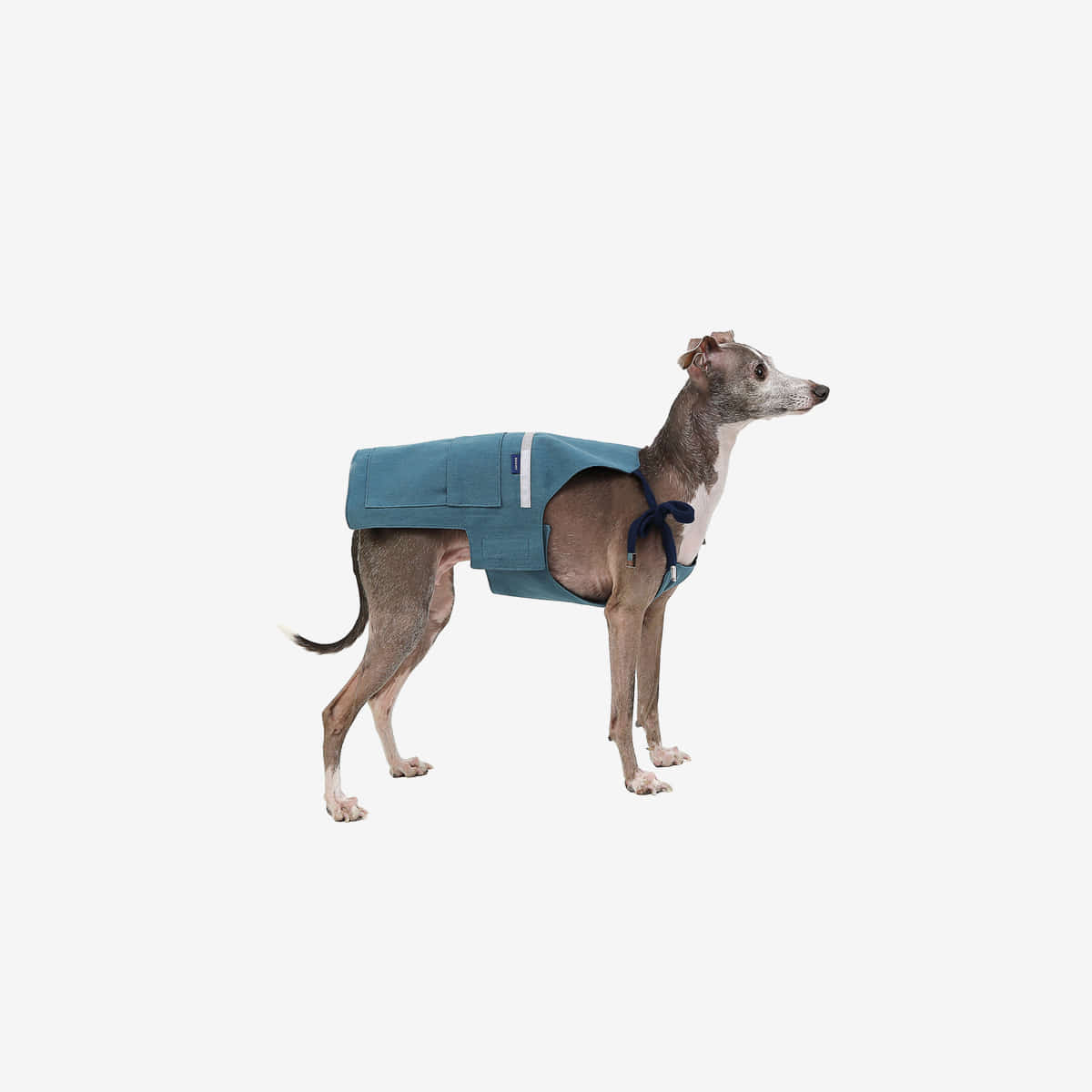 [SEOUL PET]COTTON APRON [BLUE]