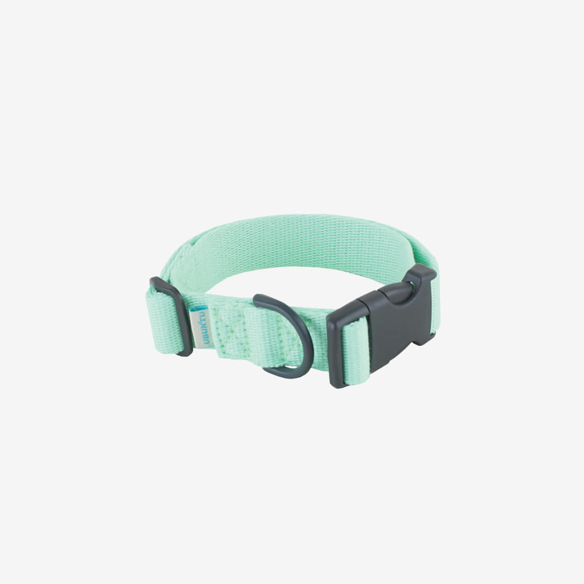 Daily collar _ neomint